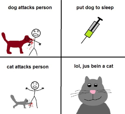 The real difference between cats and dogs...