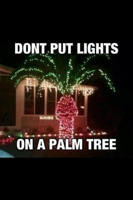 Don't put lights on palm trees
