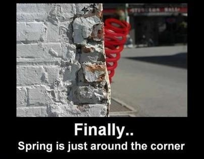 Finally… spring is just around the corner
