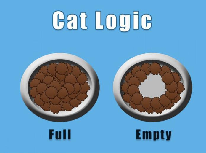 Cat Logic - eating