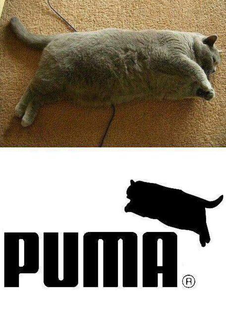 Puma's new logo