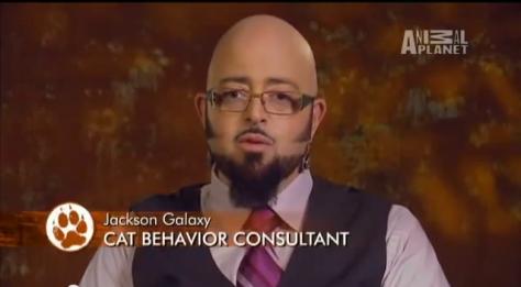 So where do you work? Oh, I'm a consultant
