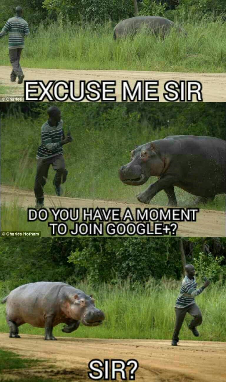 Excuse me sir...
