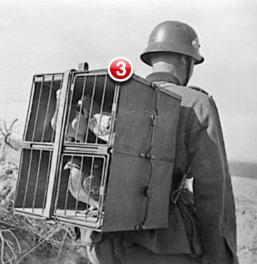 You have three unread messages