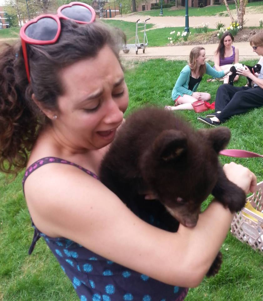 Play with the baby bears they said, it will fun they said