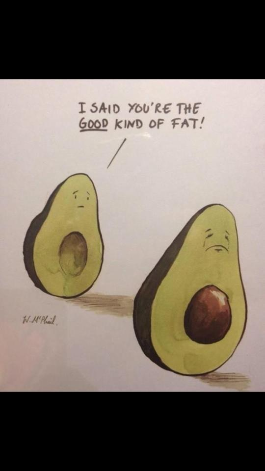 You so fat avocado