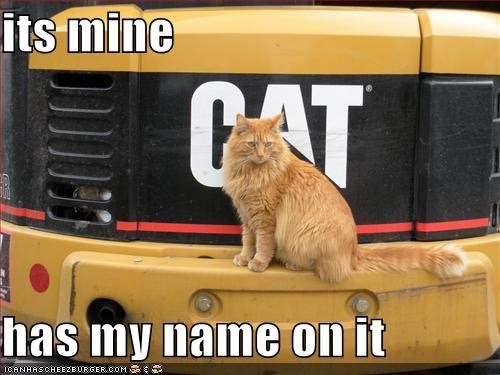 Cat logic 2